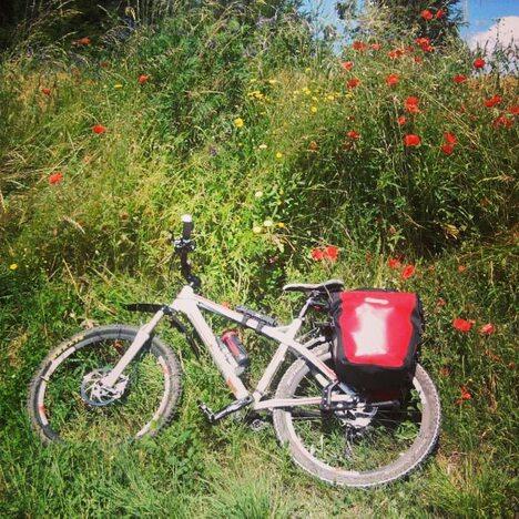 ACW2018-103 Rad Natur Wiese