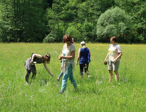 Teilnehmer Fortbildung