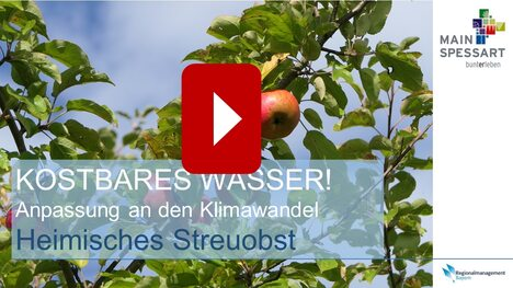 Video Streuobst